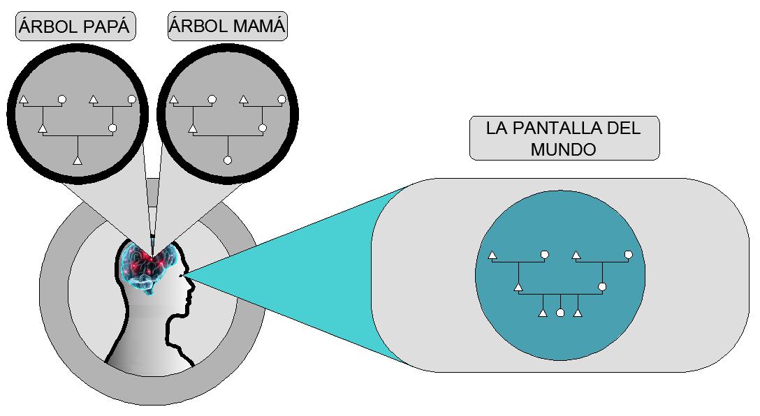 arbol vision cuantica